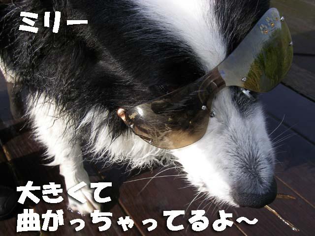 f0114893_81144.jpg