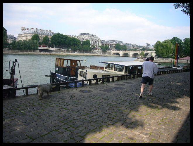 ■街角のワンコ(パリ)_a0008105_0463024.jpg