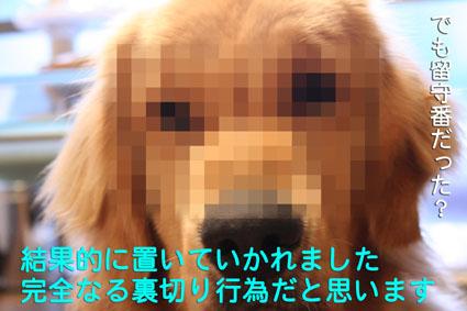 e0072606_17573410.jpg