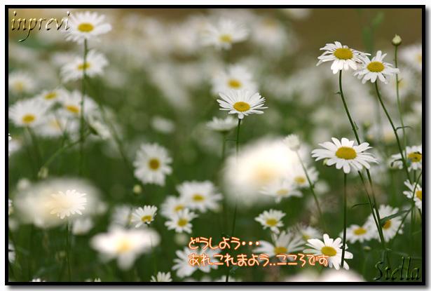d0015026_1112158.jpg
