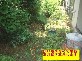 f0031037_1750322.jpg