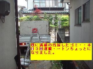 f0031037_17511187.jpg