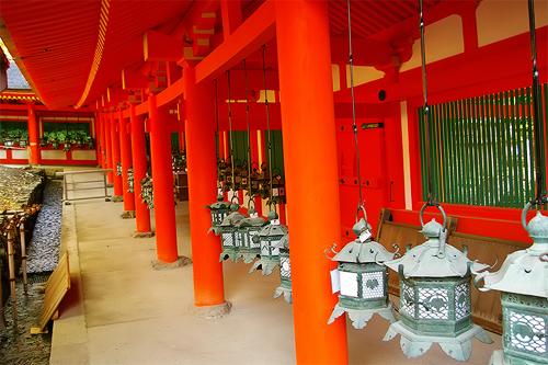 牡丹之旅‧第六日(下)奈良(春日大社)→木津(安福寺)→京都(隨心院)_c0073742_1503772.jpg