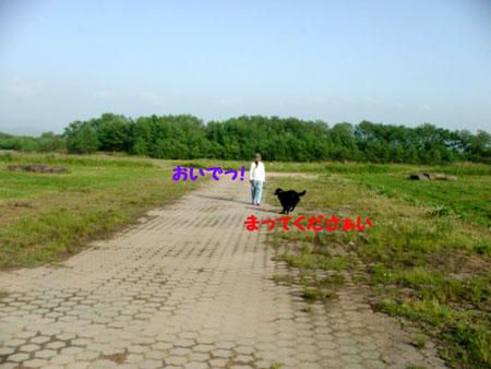 f0018144_20544117.jpg