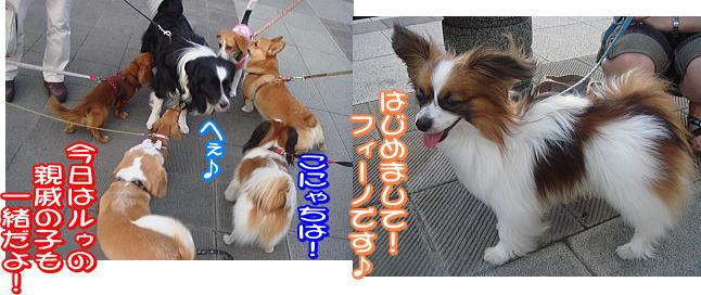 f0011845_010057.jpg