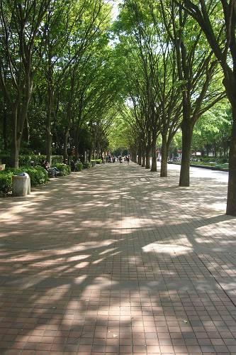 千葉市動物公園_e0000951_19322349.jpg