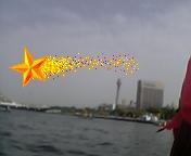 海上のハネウマライダーってとこ?_c0049455_043146.jpg