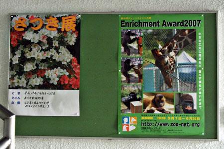 エンリッチメント大賞 2007  _b0024758_04651.jpg