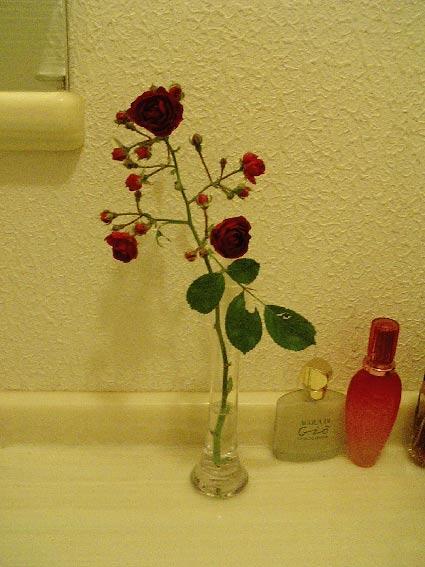 庭のバラを飾る_b0019674_2274395.jpg