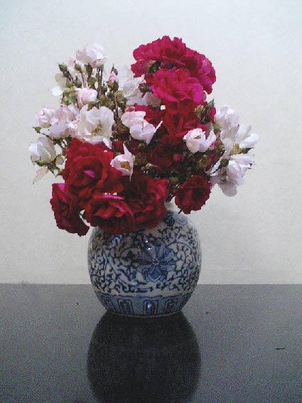 庭のバラを飾る_b0019674_2281665.jpg
