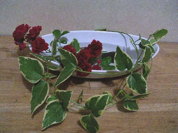 庭のバラを飾る_b0019674_2283991.jpg