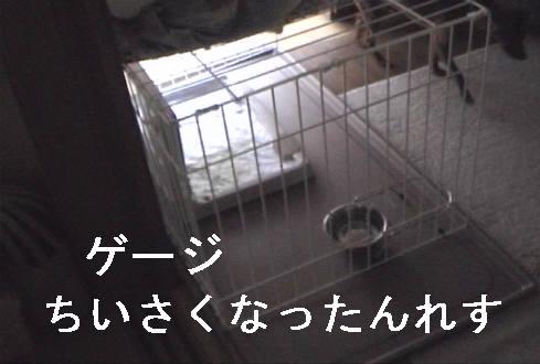 f0123589_13405234.jpg
