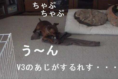 f0123589_13533774.jpg