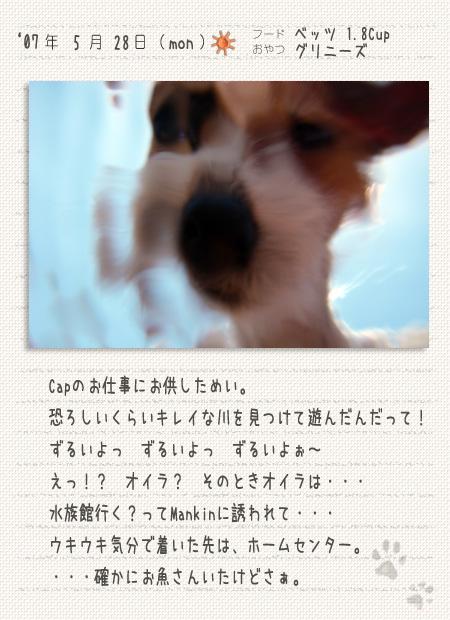 b0040323_0473416.jpg