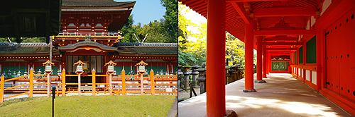 牡丹之旅‧第六日(下)奈良(春日大社)→木津(安福寺)→京都(隨心院)_c0073742_05842.jpg