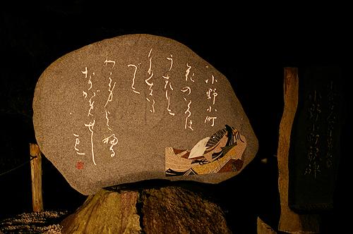 牡丹之旅‧第六日(下)奈良(春日大社)→木津(安福寺)→京都(隨心院)_c0073742_2350481.jpg