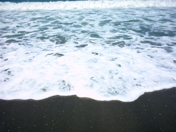 f0136049_193792.jpg