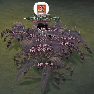 f0095379_50351.jpg