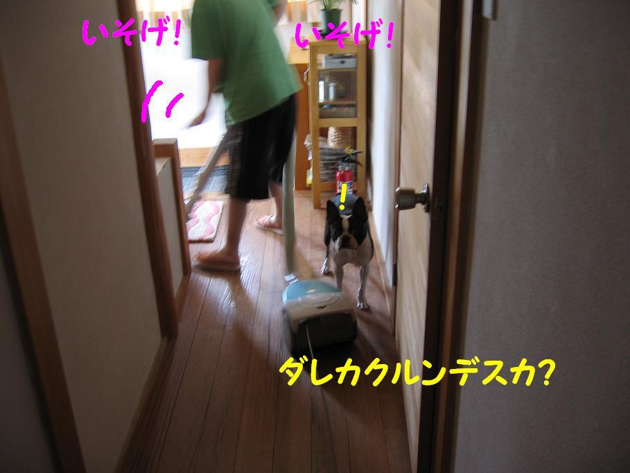 a0080889_02516.jpg
