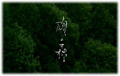 殯の森(もがりのもり)_c0026824_1658564.jpg