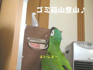 f0132055_0252977.jpg