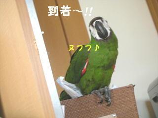 f0132055_0294758.jpg