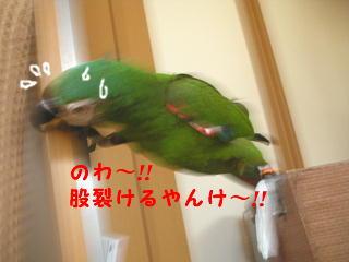 f0132055_0363942.jpg