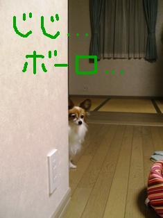 e0043162_15293654.jpg