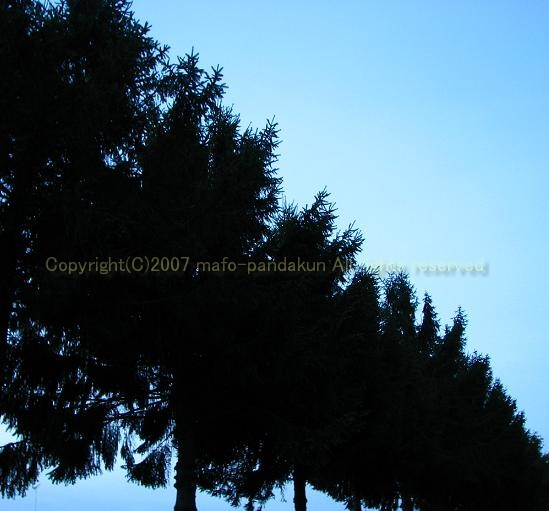 c0080667_1153368.jpg