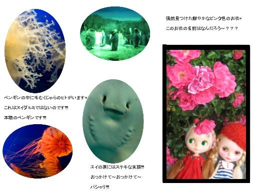 c0105972_17183355.jpg