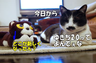b0041182_13493.jpg