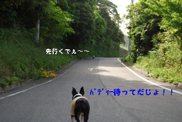 c0092787_9373641.jpg