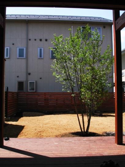 井川城の庭 完工_c0112447_2124684.jpg