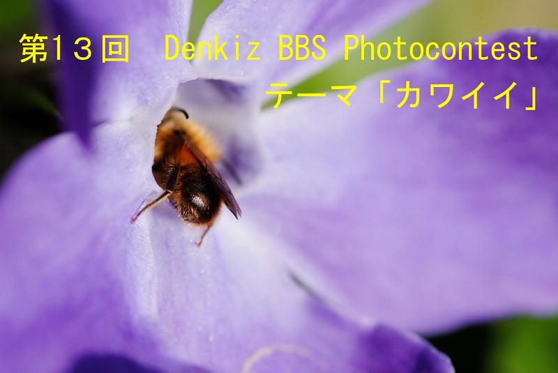f0067667_154759.jpg