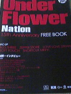 underflower   フウサワ_b0048882_2722100.jpg