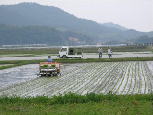 犀川米の買出しへ_c0036203_1917624.jpg