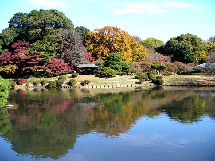 東京錦秋編(1):新宿御苑(05.12)_c0051620_1794897.jpg