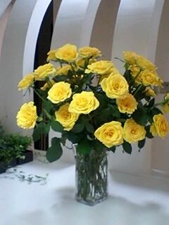The yellow rose_f0126121_0253980.jpg