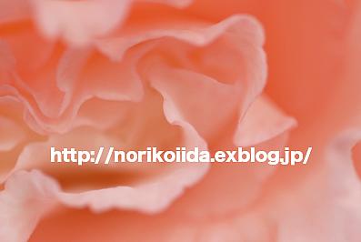 d0086230_20141698.jpg