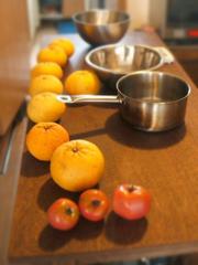 夏みかんジャムとオレンジピールを作る_c0110869_23595472.jpg
