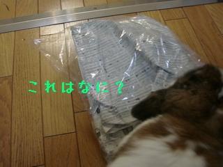 b0109692_0105924.jpg