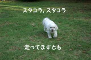f0005727_16494784.jpg