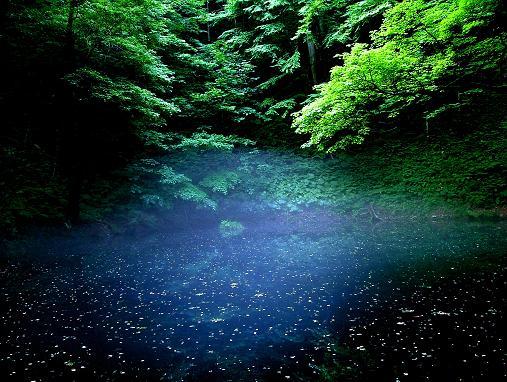 日本海の夕照_d0123528_14531824.jpg