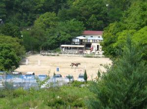 別な方向から下側を見下ろすと、乗馬サークルが望めます。馬がこれから始まるレッスンに備えてか、準備態勢を整えているようです。