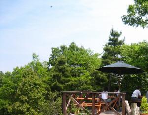 広いガーデンテラスの一部。乗馬が見えるコーナーに設えられたデッキテラス。一部にパラソルが置かれています。緑の木々の中にあって、見た目には実に美しいのですが・・・・。