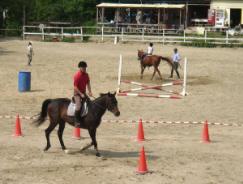 手前は大人の男性、向こう側は子供のレッスン風景です。子供用はポニーで小さな馬を使用しています。