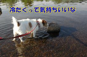 f0035044_1303156.jpg