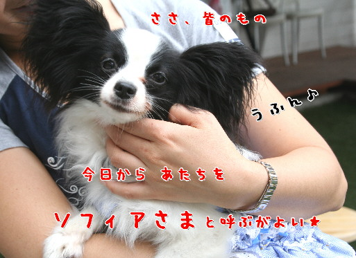 d0013149_23371032.jpg