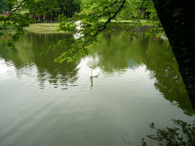 社員旅行で仙台へ(一日目)_f0054969_1024446.jpg