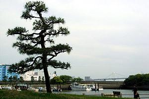 ラーメン康竜~新橋~浜離宮~日産デュアリス_b0006870_23202113.jpg